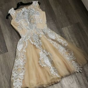Silver Lace Cream Beige Tulle Dress by Chotronette